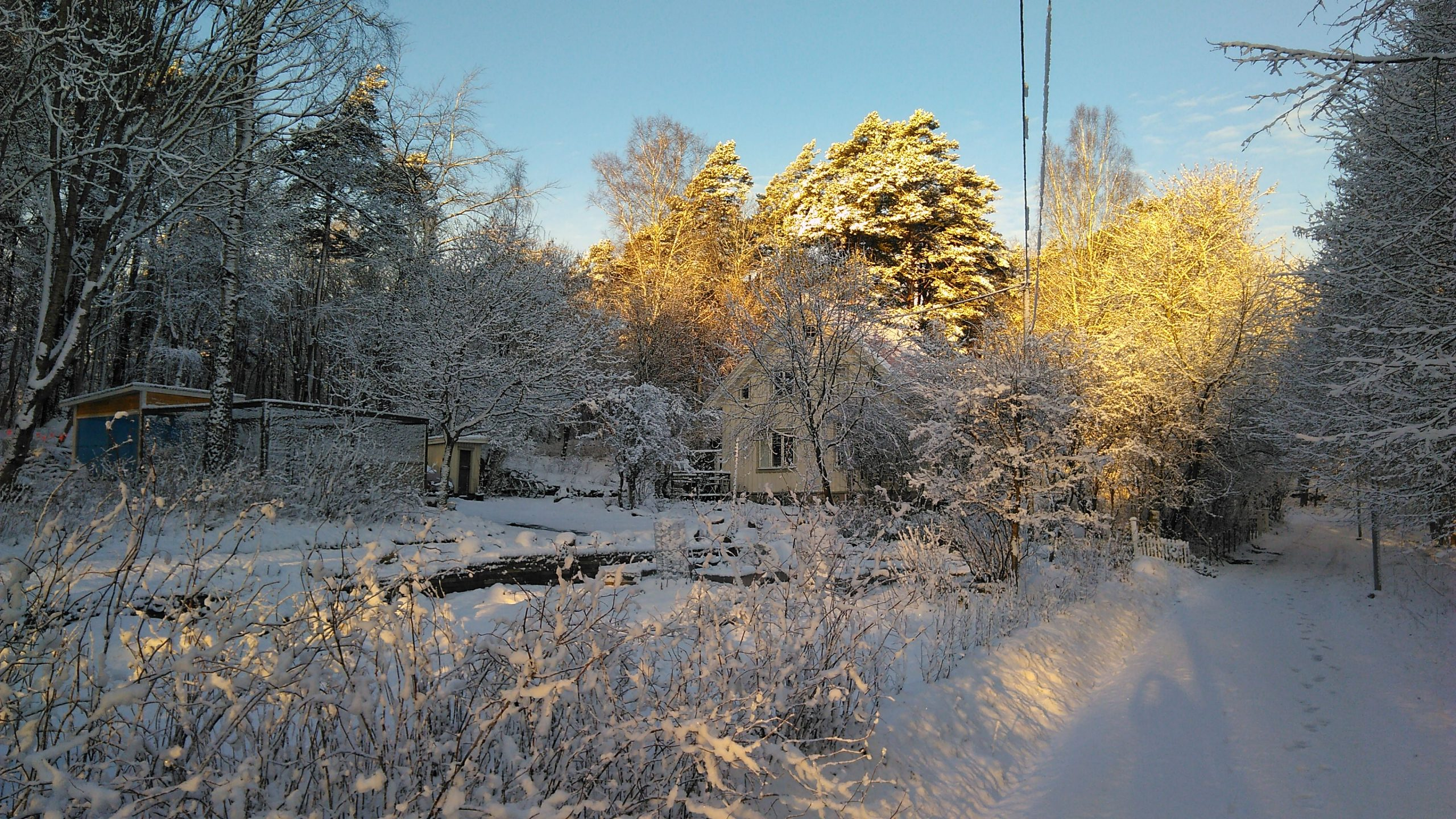 Torpet Mon in Winter