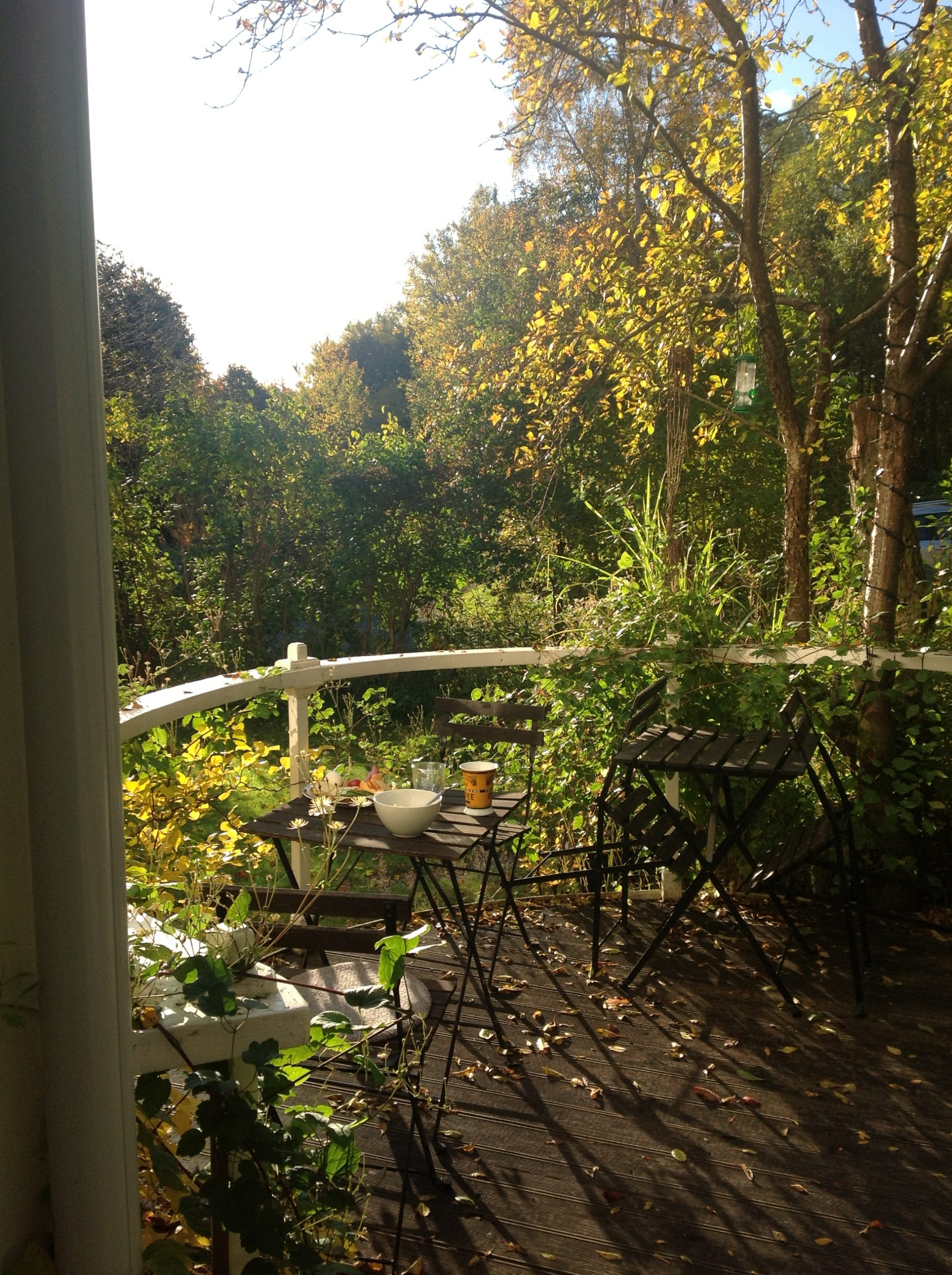 Breakfast on south porch in September