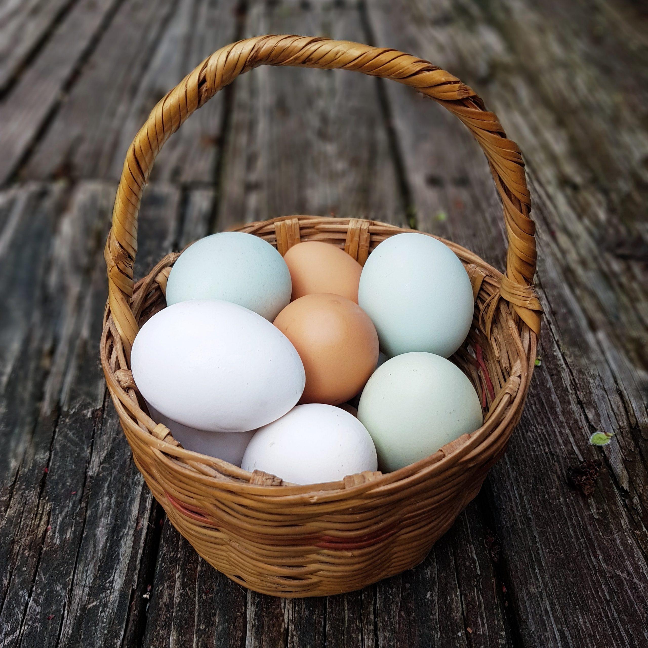 A basket of lokal eggs