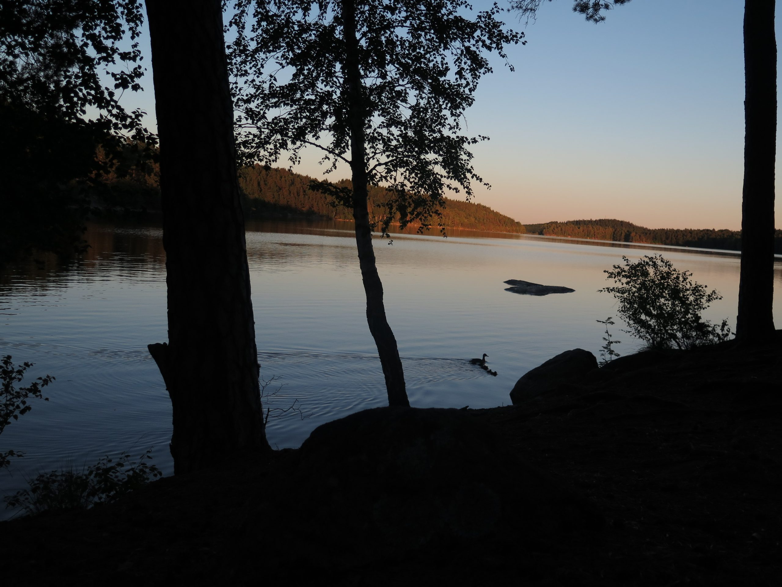 Delsjön lake in the evening