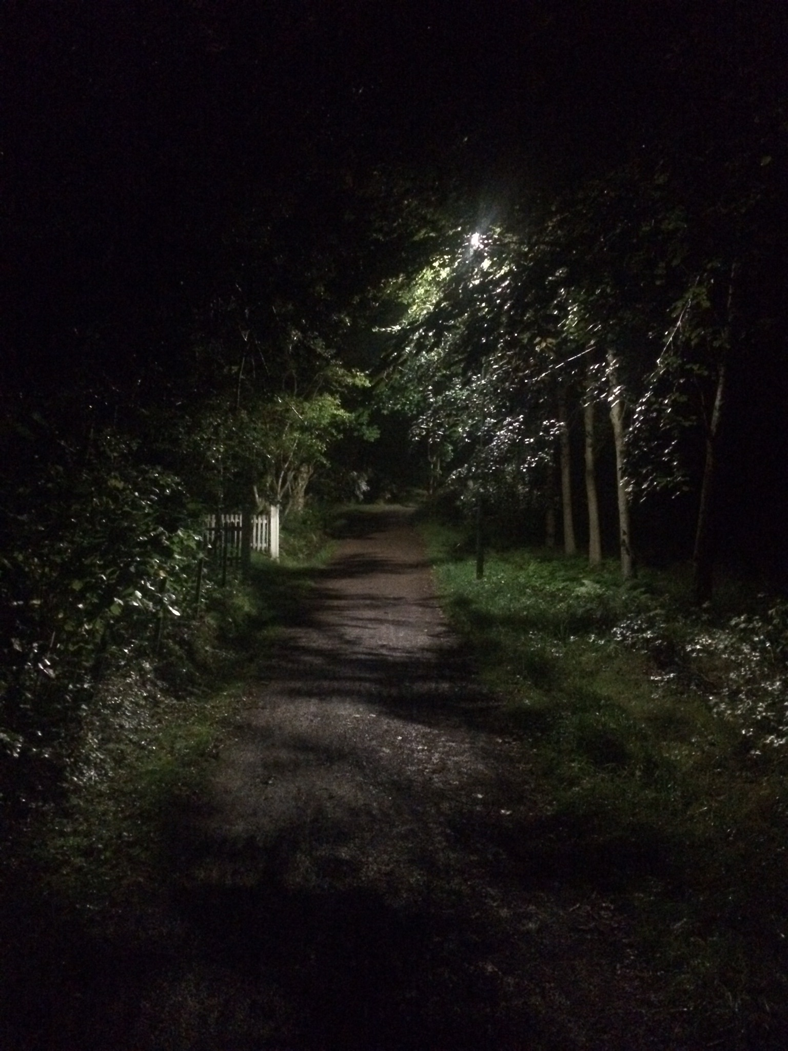 The trail pass the house - summer night