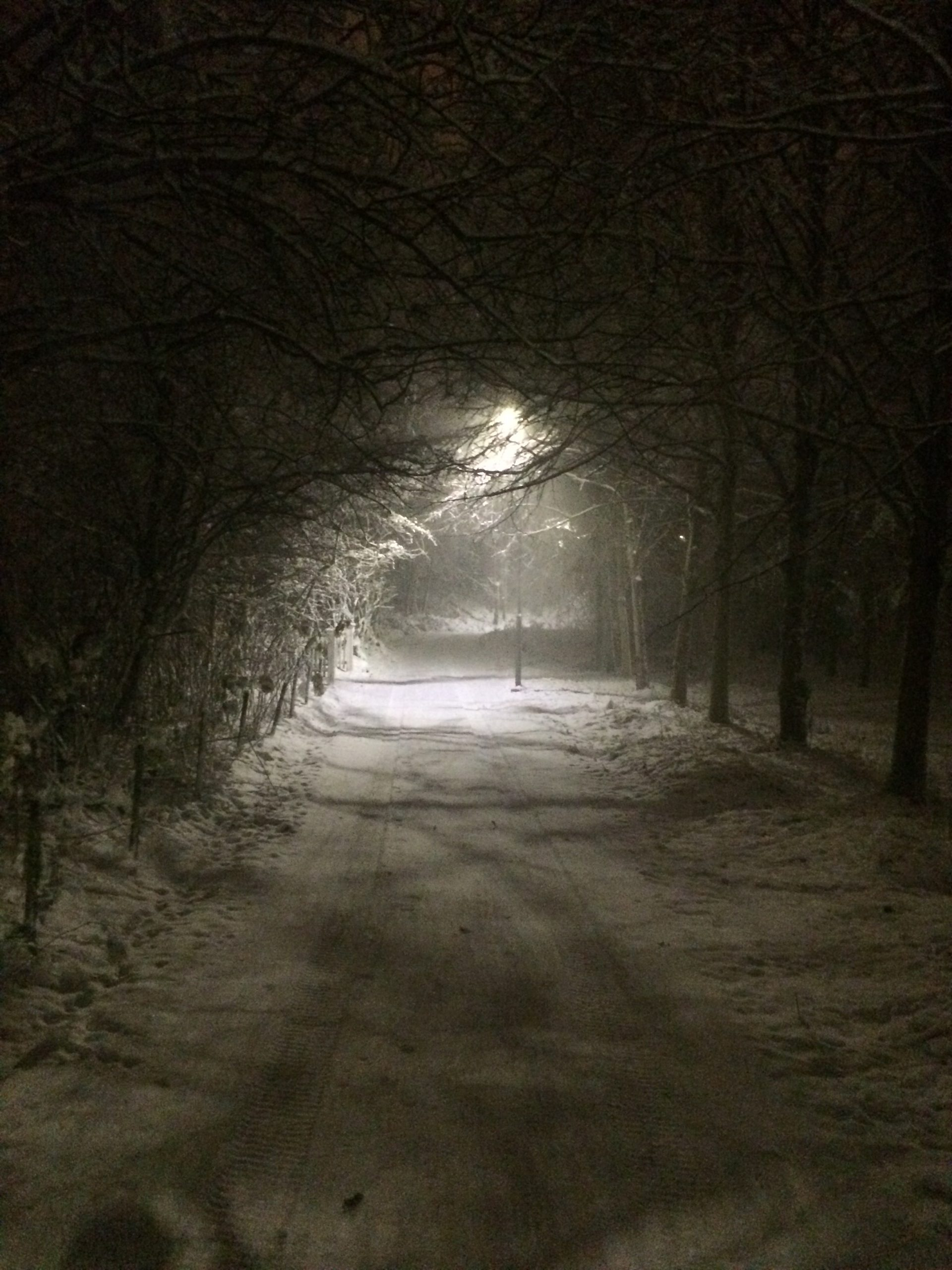 The trail pass the house - winter night